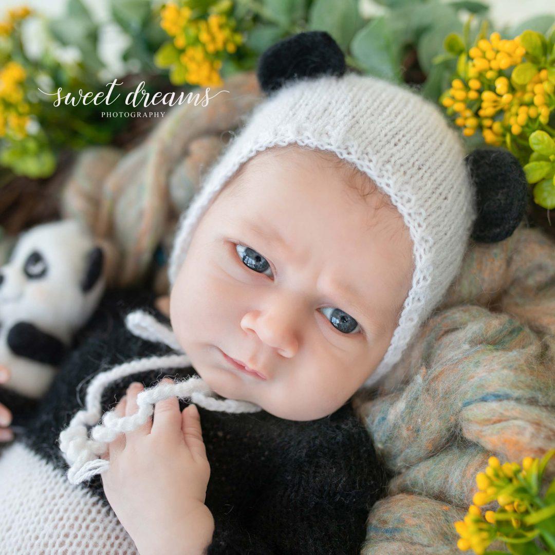 Pande Temalı Bebek Fotoğrafı