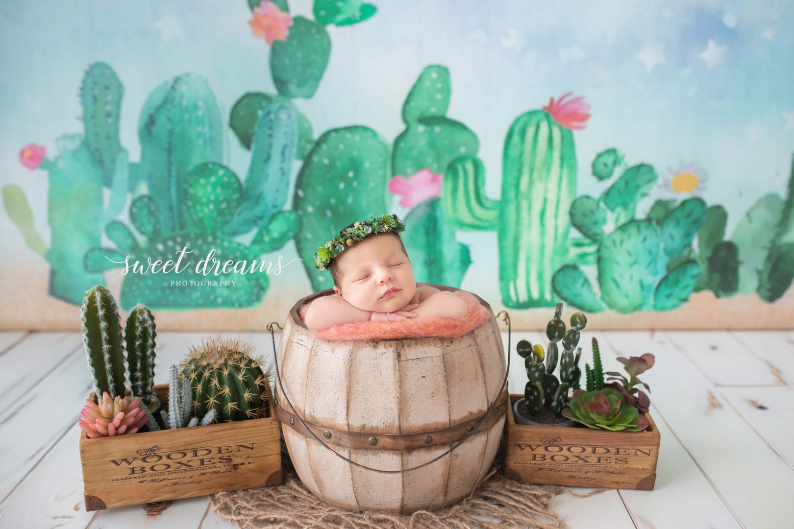Kaktüs Temalı Bebek Fotoğrafı