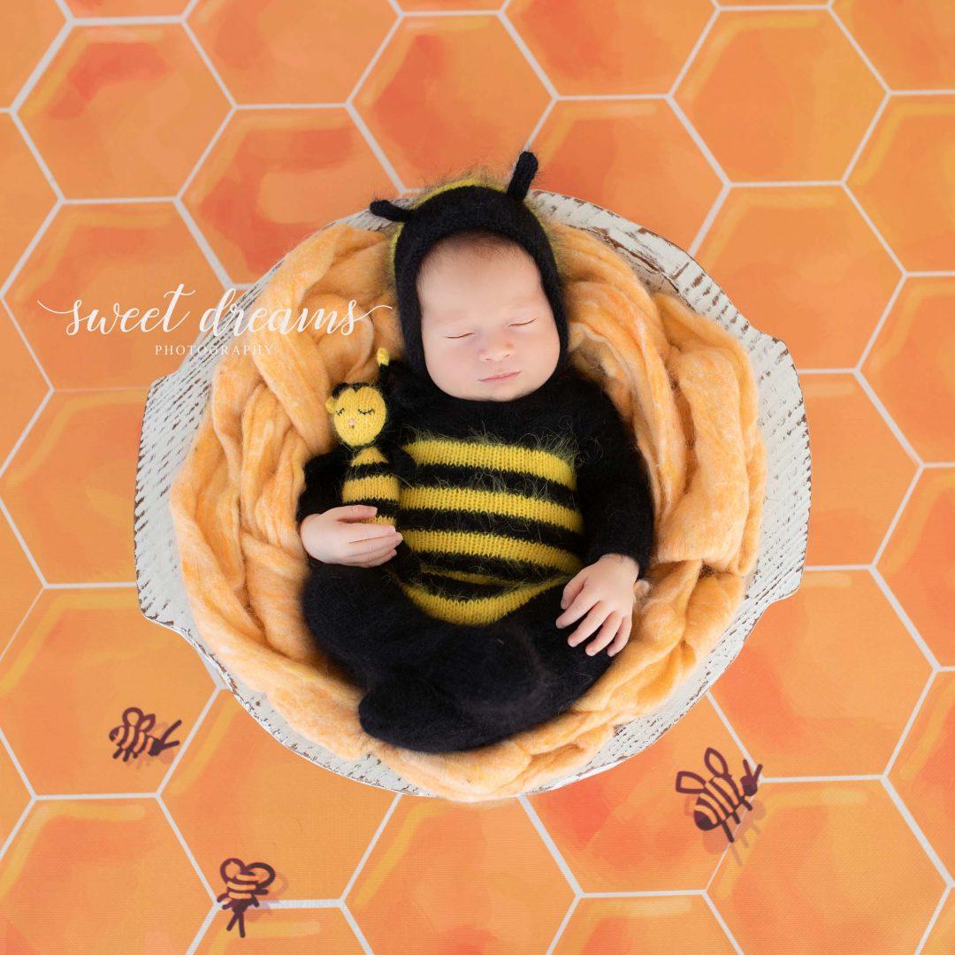 Arı Konseptli Bebek Fotoğrafları